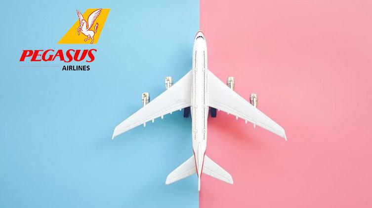 Pegasus uçak bileti telefon